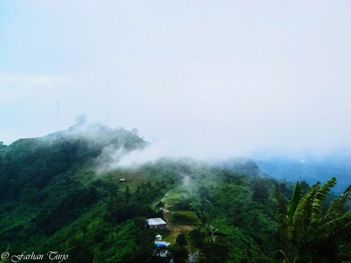 Hill view !!! Touching the clouds!! Mountain Tree Forest Nature Cloud - Sky Outdoors Landscape No People Mountain Range Mountains And Sky Mountain Landscape Bangladesh 🇧🇩 EyeEmNewHere Breathing Space The Week On EyeEm If Trees Could Speak Simple But Beautiful Clean Environment Art Everywhere Recreational Pursuit Beauty In Nature Green Environment