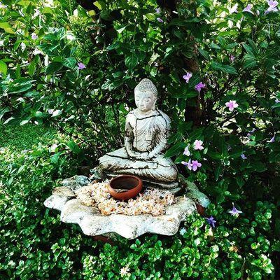 Buddha Flowers Travel Travelbook Mood Instamood Instadaily Inspiration Nature Shotoftheday Travelgram Igersoftheday Picoftheday VSCO Vscocam Bestoftheday Vacation Green Energy SriLanka Trip Kandy Igtravel InstaAsia Feeling buddhism