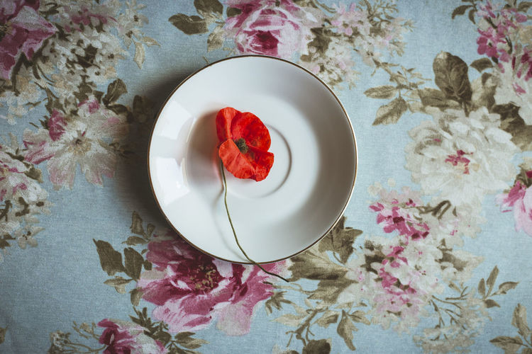 High angle view of red roses in plate on table