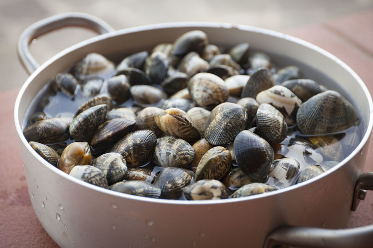 Close up of clams in a cooking pot