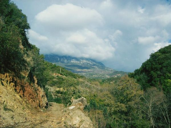 Pathways Intothewild Mountains
