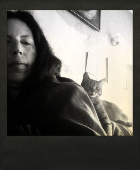 Polamatic Taking Photos Cat♡