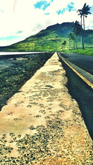 Paradise Coconut Trees Hawaii Road Mountain Color Open Edit Nature TreePorn Photo Art Lines Amazing Place Scenery Kauai♡