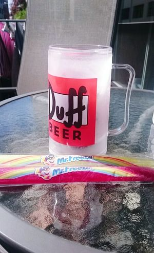Summer Hanging Out Relaxing Enjoying Life Oslo Mrfreeze DuffBeer Duff Beer