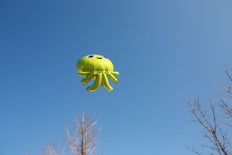 Low angle view of a bird flying against clear blue sky