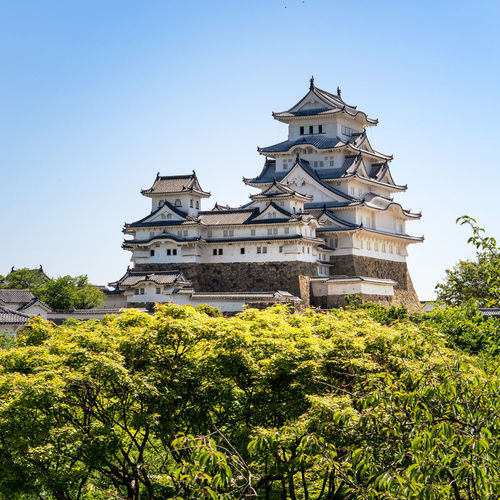 Plant Architecture Building Exterior Built Structure Sky Building Clear Sky Tree Nature Low Angle View No People Growth Day Travel Destinations Castle The Past Green Color Outdoors Religion History Spire