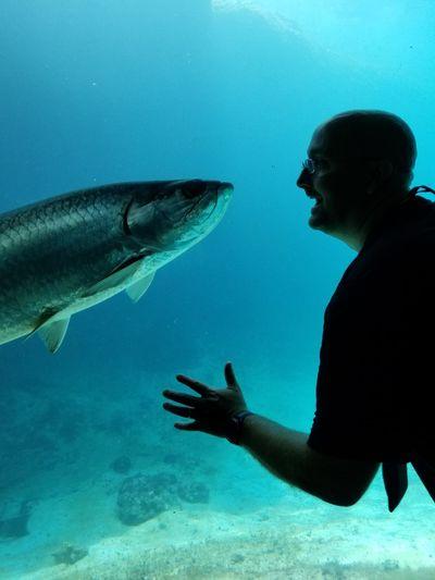 Man looking at fish in aquarium