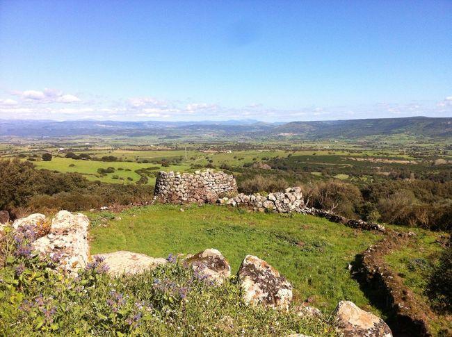 Green Greenfields Landscape Nature Nuraghe Sardegna