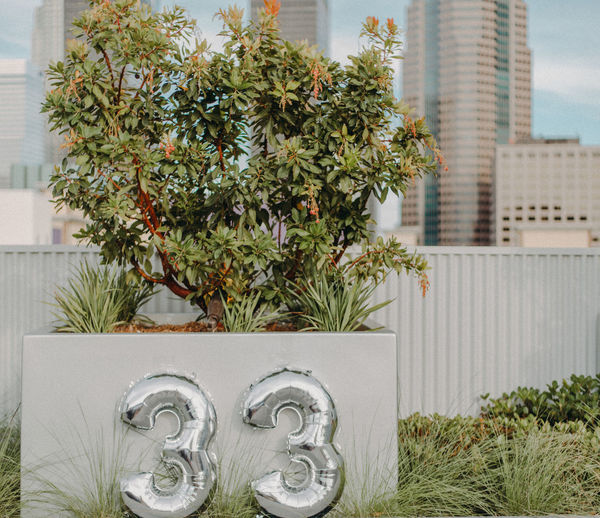 City Cityscape Architecture Building Building Exterior Built Structure City Close-up Day Focus On Foreground Front Or Back Yard Grass Green Color Growth Leaf Metal Nature No People Number Numbers Outdoors Plant Plant Part Thirtythree Tree