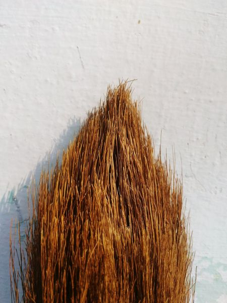 Broom hairs No People Day Outdoors Broomstick Brooms  Broom Broomstrands Broom, Wooden, Closeup, Swab, Manual, Floor, Dust, Parquet, Housework, Tidying, Dusty, People, Living, Household, Worker, Female, Tidy, Girl, Swabber, Woman, Housecleaning, Sweeping, Professional, Home, Servant, Work, Indoors, Janitor, Maid, Concept, Clea