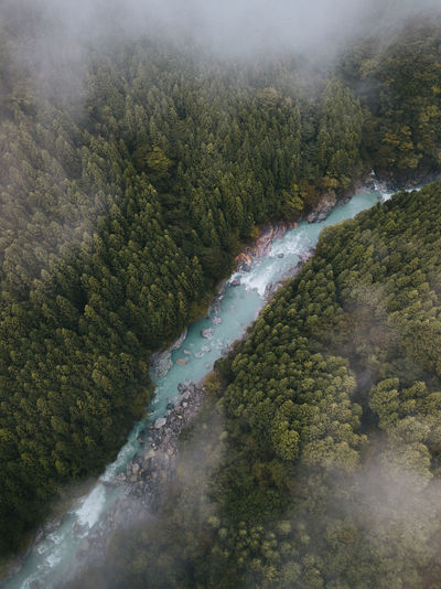 Beauty In Nature Scenics - Nature No People Tree Plant Day Tranquility Forest Non-urban Scene Nature Water High Angle View Tranquil Scene Environment River Outdoors Mountain Flowing Flowing Water Power In Nature Cloud Stream Aerial View Aerial 17.62°