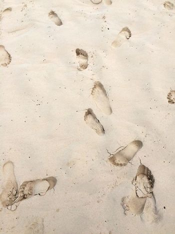 Sand Land Beach FootPrint No People High Angle View Nature Backgrounds Pattern Textured  Paw Print Day Close-up Full Frame Outdoors Print Sunlight Track - Imprint Summer Exploratorium
