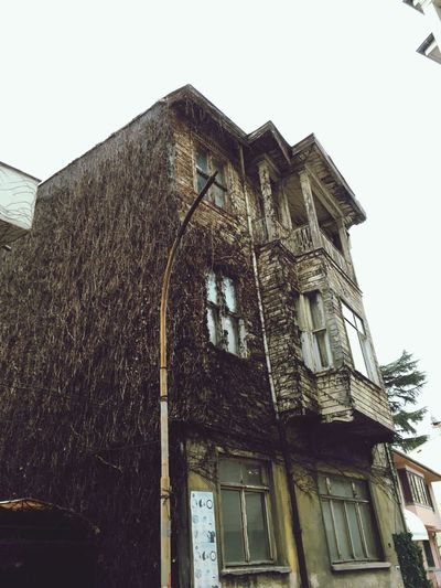 Istanbul Turkey Architecture Built Structure Low Angle View Sky Building Exterior Clear Sky No People Nature History Old House Building Tree