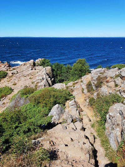 Landscape_Collection Sweden Hovs Hallar Beauty In Nature Bildfolge Photography Tree Green Wild Flowers Nature Sea Baltic Sea Horizont  Rock - Object Rock Formation Water Plant Summer Water Clear Sky Sea Beach Blue Summer Sunlight Sky Horizon Over Water Landscape Natural Arch Physical Geography