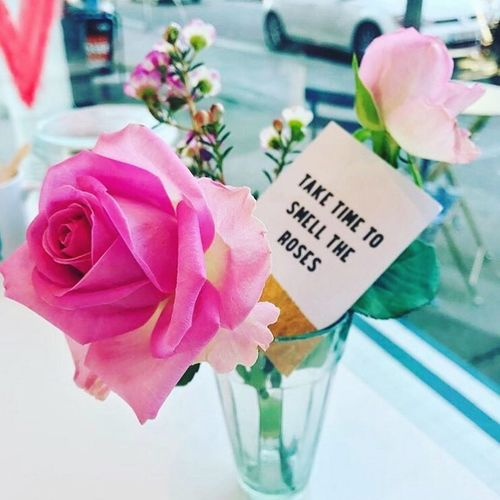 Flower Pink Color Roses Message Freshness Indoors  Text Western Script Vase Label Fragility Close-up Petal No People Communication Flower Head Rose - Flower Nature Day Beauty In Nature Leaf First Eyeem Photo The Week On EyeEm