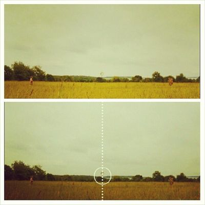 Simetria e Wes Anderson, sempre juntos Moonrisekingdom Wesanderson Simetria
