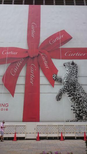Cartier Renovation Cool