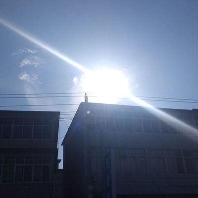 Sun Day Sunlight