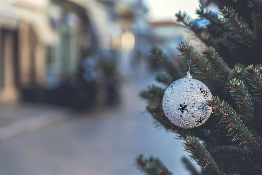 Christmas Tree Branch Christmas Christmas Decoration Christmas Ornament Christmas Tree Close-up Cold Temperature Day Hanging Nature No People Outdoors Snow Tree Winter