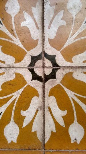 Casarao House Floor Historical