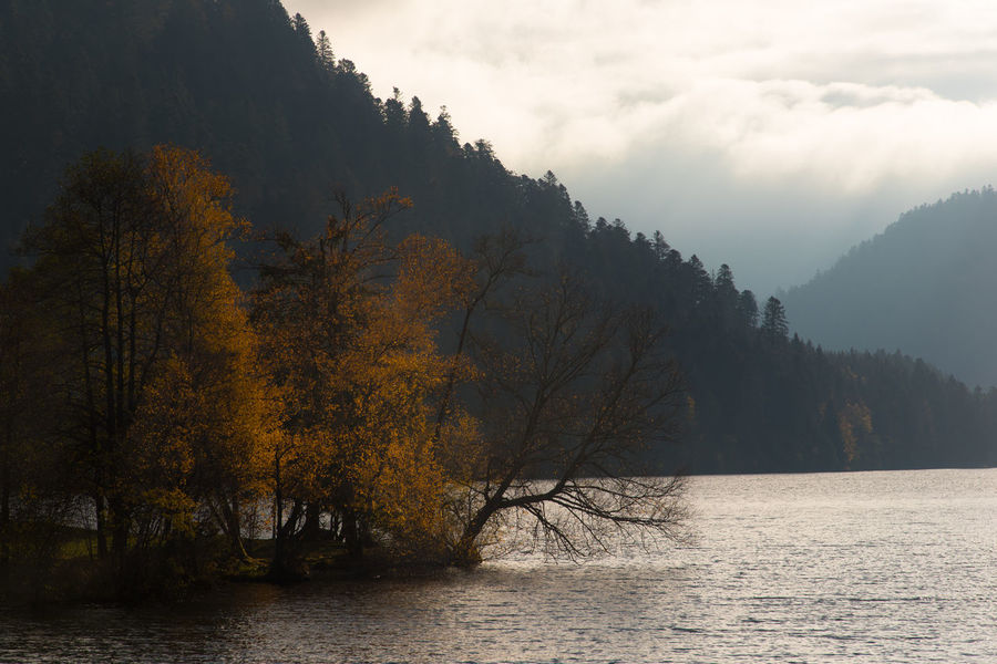 Lake Nature Tree Mountain Island Water Autumn Sky And Clouds Landscape Plant Beauty In Nature Tranquility Waterfront Scenics - Nature Tranquil Scene No People Forest Non-urban Scene Sky Change Fog Outdoors