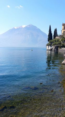 Blue Wave Blue Sky Boat Ducks Lago Di Como Italy Mountains Mountains And Sky Lake Como Lake View Great Atmosphere Hello World Taking Photos Visit Italy Nice Day Beautiful Good Weather Trees And Sky Trees And Water Lonely Boat High Mountains Snow Clouds And Sky Clouds Foggy Weather