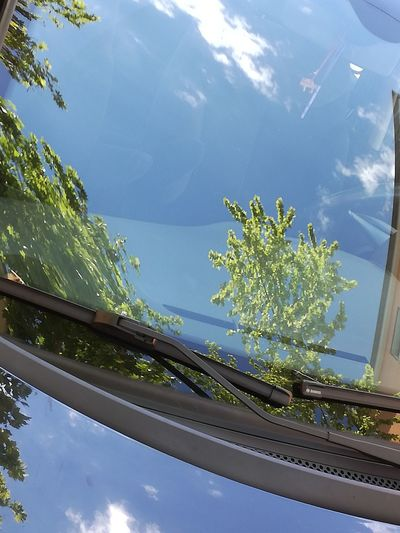 Carreflection collection Nature Tree Sky Day Outdoors No People Beauty In Nature Nofilternoedit Close-up Mobilephotography Phoneography Huaweip9photos AbstractGlassreflections Daylight Photography Altered Reality Car Glass Reflections Carglass Daylight Reflection_collection Abstract Photography The Purist (no Edit, No Filter) Carreflection Collection