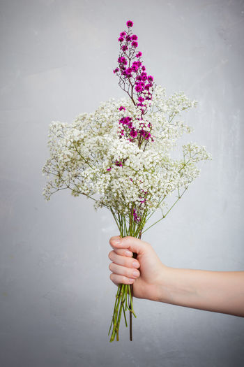 Flowers in front of a grey background Bouquet Close-up Day Flower Fragility Freshness Grey Background Holding Human Body Part Human Hand Indoors  Nature One Person