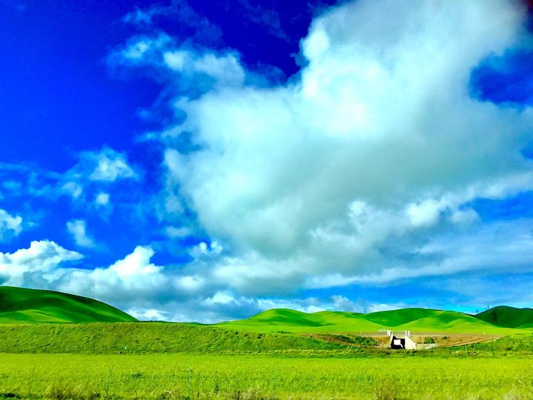 Field Landscape Green Color Nature Scenics Growth Sky Grass Rural Scene Beauty In Nature Tranquility Tranquil Scene Agriculture Outdoors No People Cloud - Sky Day Freshness Hill Hills Feel Good Fresh Grass Grassy Grassland