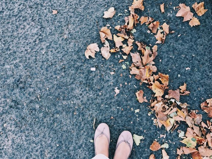 Low section of woman wearing shoes standing by dry leaves on road