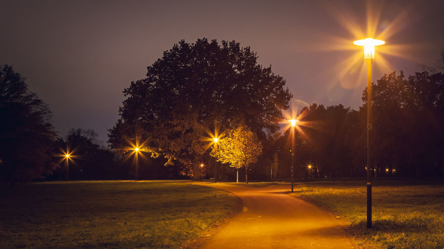Illuminated street by trees against sky at night