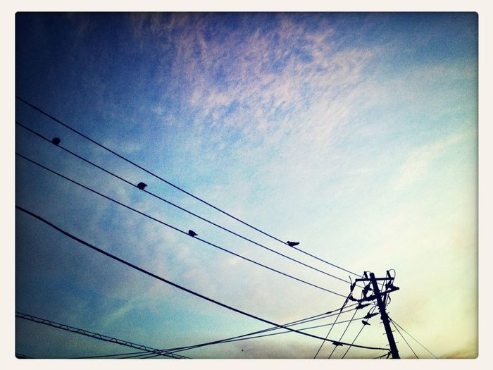 Good Morning! Power Lines