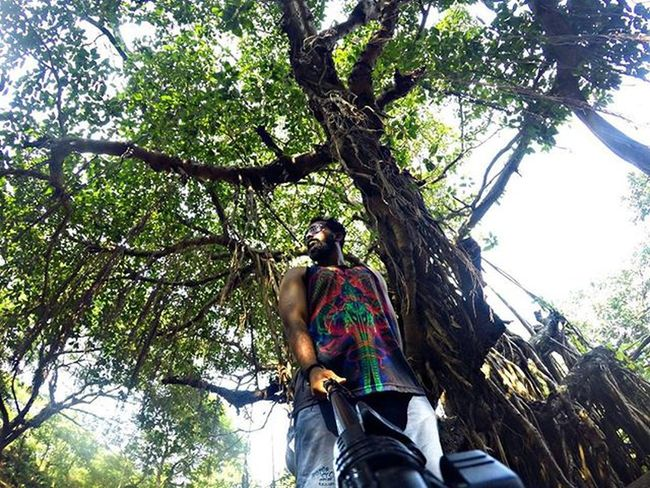 🌳 tree of life 🌳 Naturelover Naturephotography Photooftheday Gopro Tree Ageoldbeauty Ilovenature Ahd Goa Mytravelgram