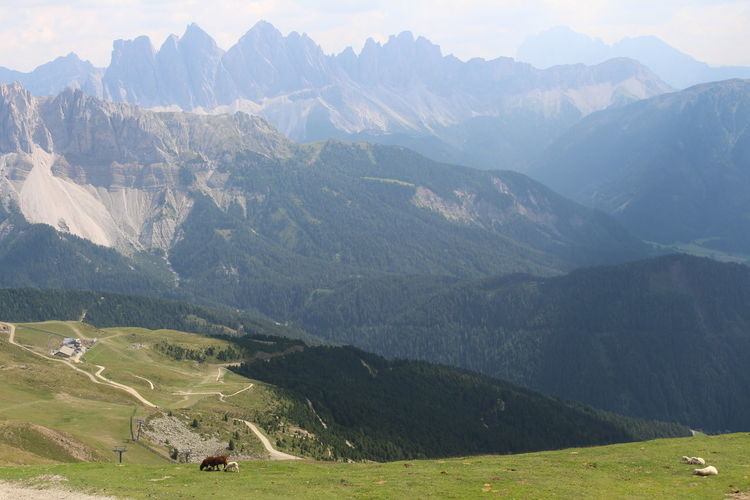 The area of a peak Plose close to Bressanone-Brixen in Alto Adige. In distance we see Dolomites. Mountain Scenics - Nature Environment Landscape Beauty In Nature Mountain Range Tranquil Scene Tranquility Non-urban Scene Grass Idyllic Mountain Peak Land Nature Field Activity Green Color