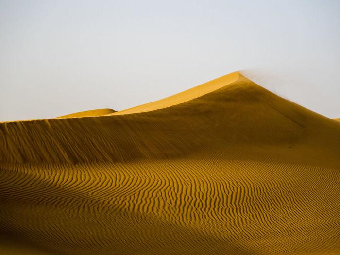 sunset on sand dunes in the desert near Dubai Travel Adventure Outdoor Sand Dune Desert Arid Climate Sand Accidents And Disasters Landscape Sky Arid Landscape Natural Pattern