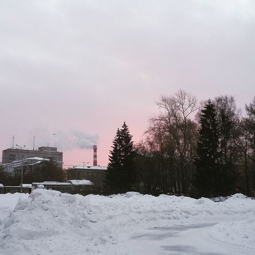 кажется, наконец-то рассвет #Pink  Sunrise #Morning #russia Snow Winter Cold Temperature No People Tranquility Outdoors Snowing Sky Day Nature Tree
