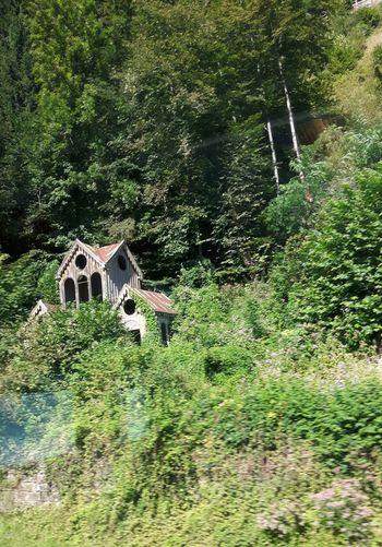 Irgendwo zwischen München und Bozen Italien. Bilder von fahrendem Zug. Bildervonunterwegs