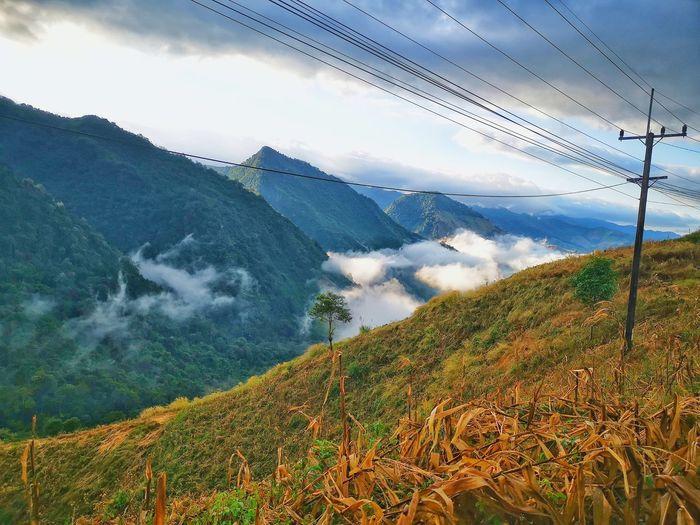high foggy hill