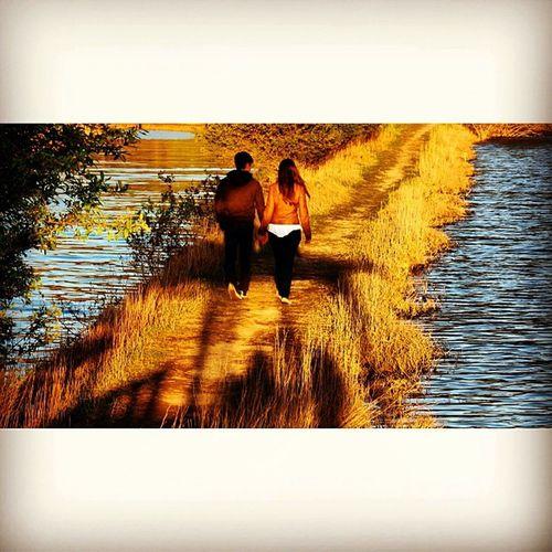 #igers #igers_porto #igersportugal #portugaligers #portugalovers #portugal_de_sonho #portugal_em_fotos #portugaloteuolhar #portugaldenorteasul #p3top #ig_portugal #iphone5 #iphonesia #iphoneonly #iphonegraphy #instagood #instagram #instalove #instagramhub Iphonegraphy Portugaligers Igersportugal Canon Igers_porto Portugaldenorteasul Iphoneonly Portugaloteuolhar Iphonesia Eos650 Instagram Portugal_em_fotos IPhone5 Ig_portugal P3top Portugal_de_sonho Igers Aveiro Pateiradefermentelos Portugalovers Instagood Instagramhub Instalove