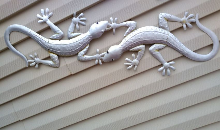 Lizards For Lymphoma!!! Cancer Awareness!!! The Week On EyeEm Popular Photographs Animal Themes EyeEm Gallery EyeEm Masterclass EyeEm Diversity Taking Photos Travel Destinations Exceptional Photographs Don't Give Up Cancerawareness Cancer Survivor CancerWarrior Lizards On The Wall Lymphoma Awareness Different Perspective Metal Art On My Wall On My House Outdoor Art Outdoor Decoration Design Western Style FUNNY ANIMALS On An Angle EyeEm Selects No People Day Outdoors Close-up Fashion Stories
