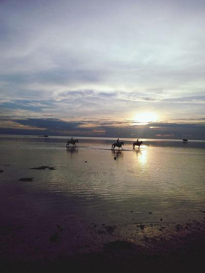 San Remigio,Cebu Stories And Photographs Beach Photography Beach Sunset