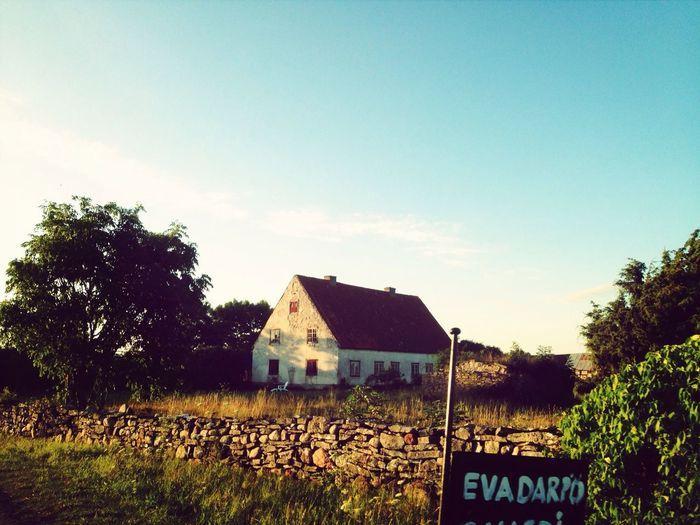Sweden Summer Nature Landscape