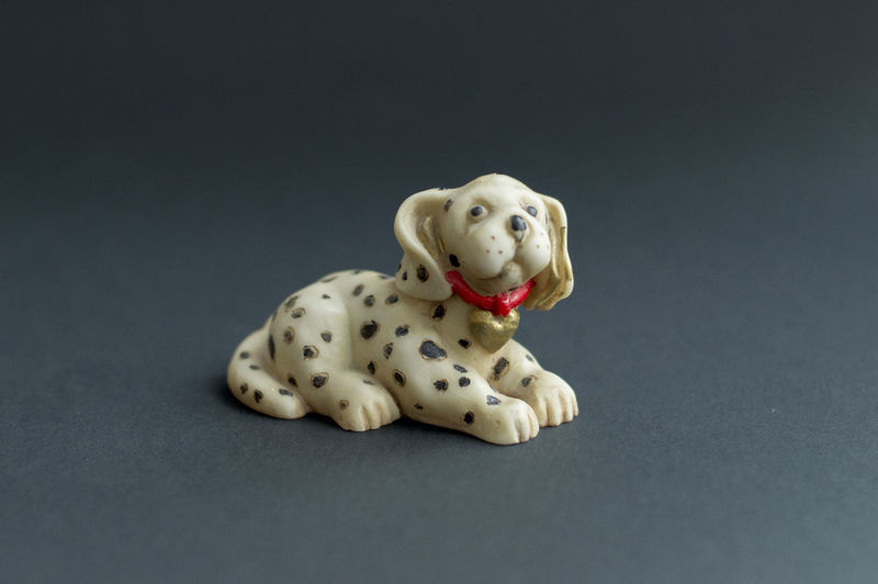 View of stuffed toy against black background