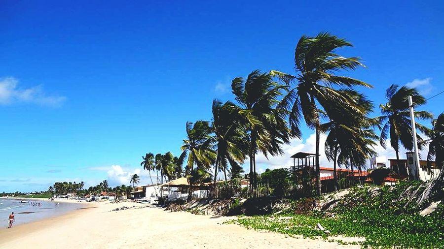 Beach Natal