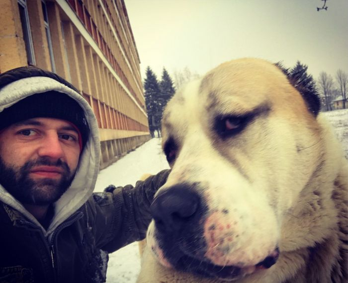 Alabai Domestic Animals Looking At Camera Real People One Animal Mammal Portrait Pets Outdoors Dog Men Clear Sky One Person Day Young Adult Close-up Warm Clothing Sky Human Hand