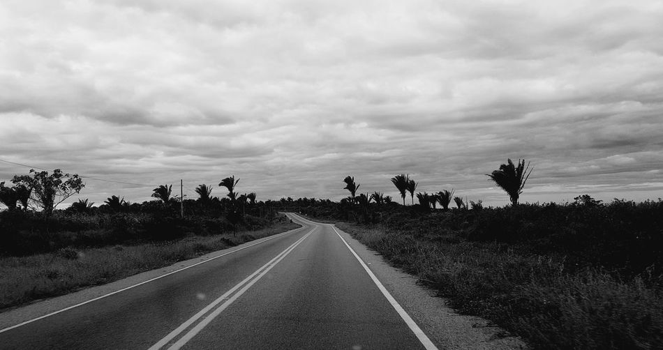 Ce257 Estrada Caminho Photo Travel Outdoors Nature Day No People Landscape Nature Naturelover Nature_collection Black And White Photography Blackewhite