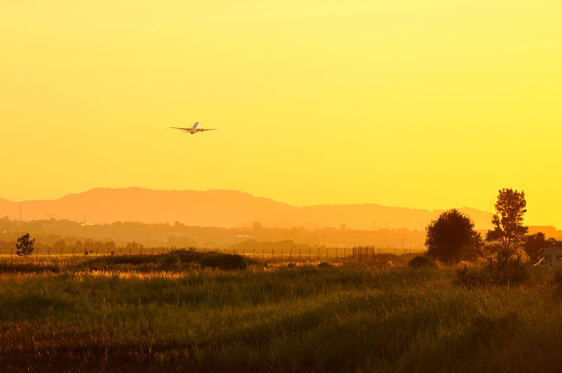 Airplane flying over field