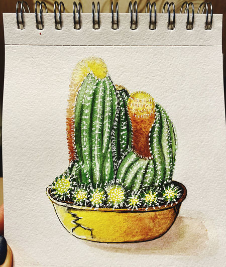 Close-up of cactus growing on potted plant against wall