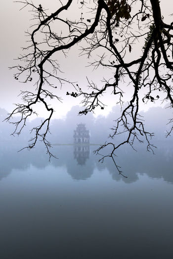 Silhouette tree by lake against sky during foggy weather