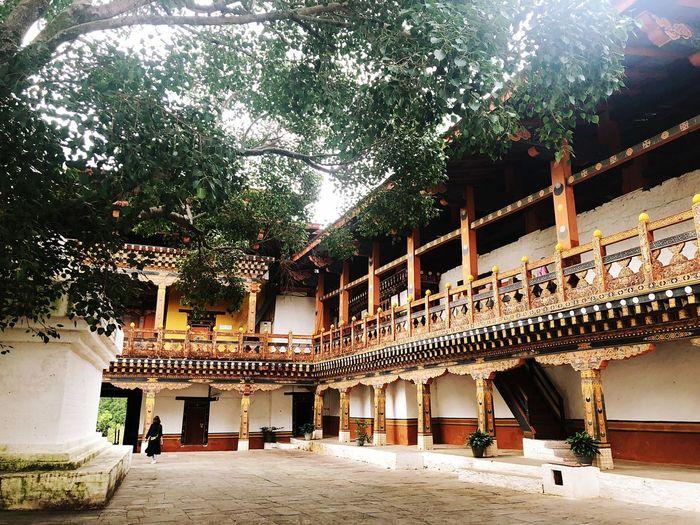 #bhutan #punakhadzong #moontravelling # Built Structure Architecture Tree Plant Building Exterior Building Nature Religion Architectural Column Travel Destinations Place Of Worship Outdoors